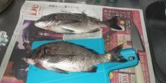 2012_0226_135423-DCF00168.jpg
