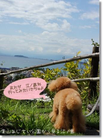 江ノ島 見えたよ