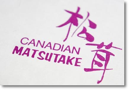 カナダからのマツタケ