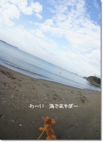 海でトレーニング