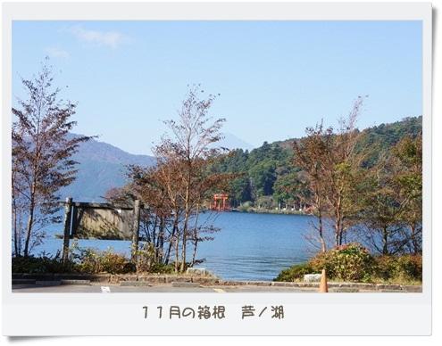 11月の箱根