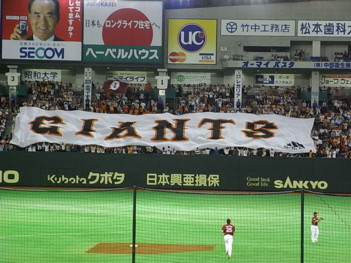 080529 baseball1
