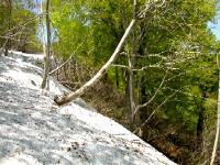 雪渓1.ココは今なら歩けるけど