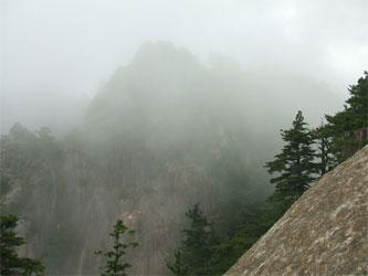 霧がかかって幻想的