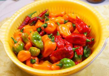 080819_peppers2.jpg
