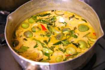 080911_green_curry4.jpg