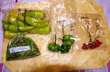 080916_peppers01.jpg