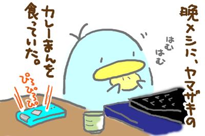 絵日記080126-1
