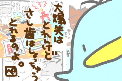 絵日記080324-1