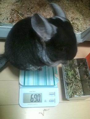 加奈ちゃん、体重測定