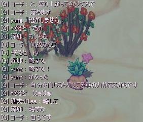 31_02.jpg