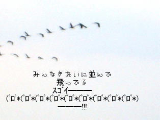 051022-010.jpg