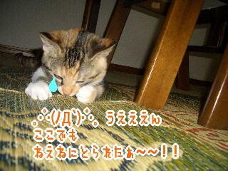 mm060818-5.jpg