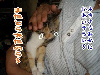 mm060819-4.jpg