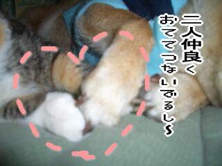mm060903-2.jpg