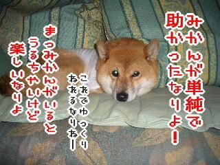 mmf060816-013.jpg