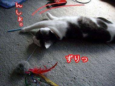 2008-10-3-3.jpg
