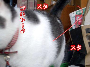 2008-9-3-4.jpg