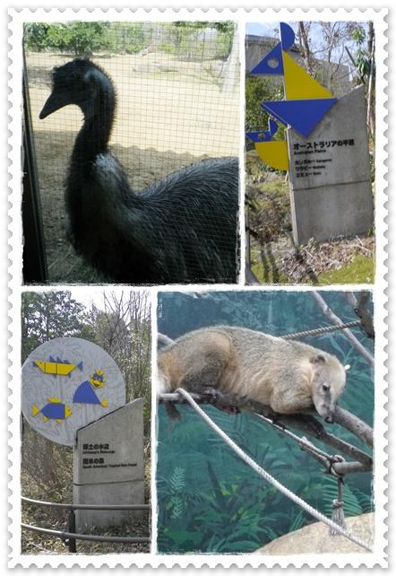 石川動物園5