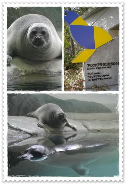 石川動物園1