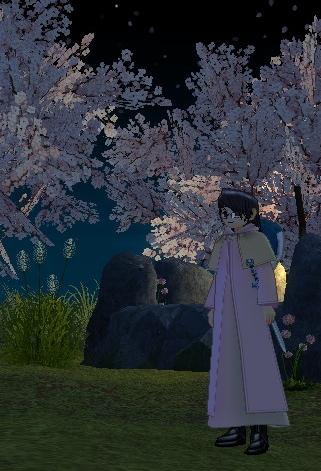 mabinogi_2009_05_17_030-crop.jpg