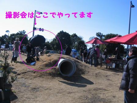 11IMG_6624.jpg