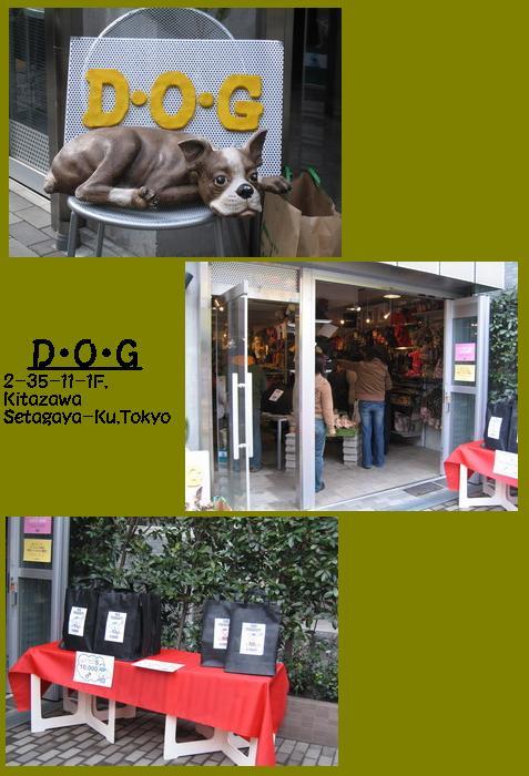 19-DOGphoto.jpg
