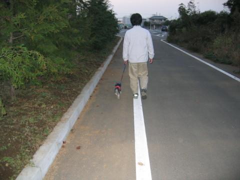パパとお散歩でしゅよん。