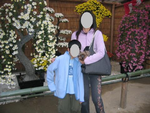 ママとお兄ちゃんと菊の前で!