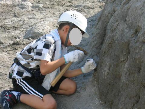 化石発掘してます。あつい~。