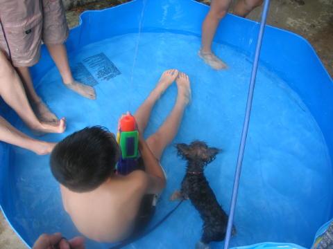 お兄ちゃん達とプールでしゅ!