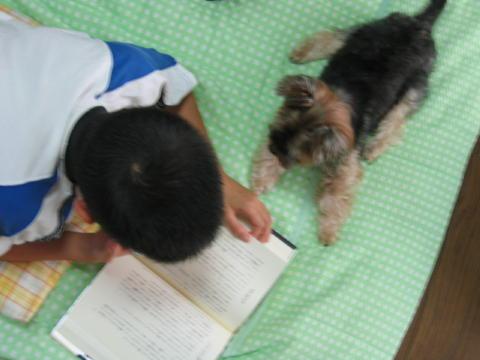 お兄ちゃんと一緒に読書するでしゅ!