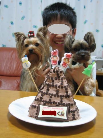 ピラミッドケーキ欲しいでしゅ。