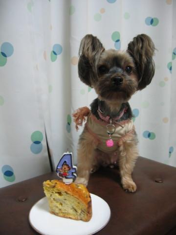 あたちのケーキでしゅよ。
