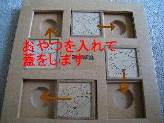 IMG_0725_1.jpg
