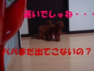 DSC02583s-.jpg