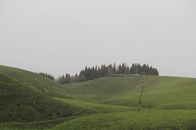 1156-20.jpg
