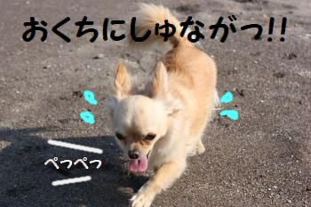 IMG_0626.jpg