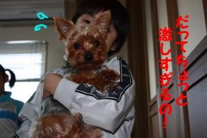 IMG_1208_convert_20090519170912.jpg