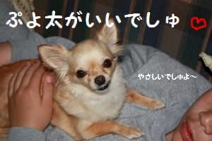 IMG_1321_convert_20090520215251.jpg