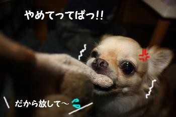 IMG_3830.jpg