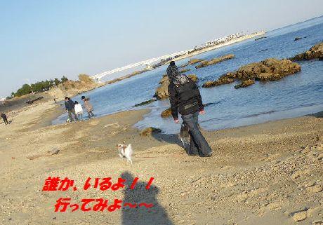 IMGP4714.jpg
