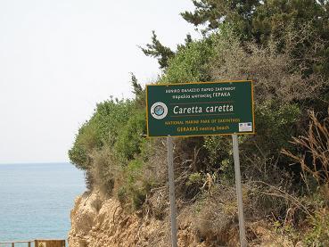 カレッタ・カレッタが産卵するビーチであることを示す看板
