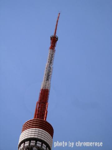 sakura2011_02