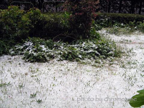 snow_april01