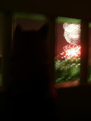 初の花火を見る紅
