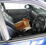 車で待つ健太郎