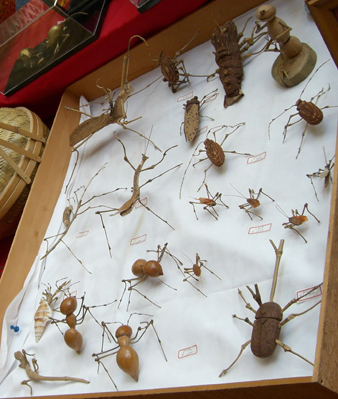 昆虫いろいろ