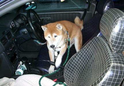 運転席で待つ健太郎