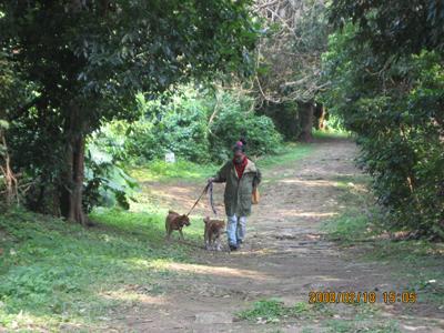 末吉公園内末吉宮への路散策